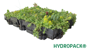 hydropack-sedum-web-uk