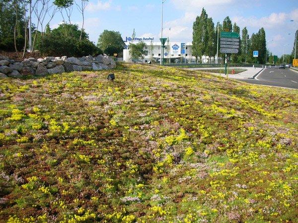 amenagement-vegetalise-Sarcelles