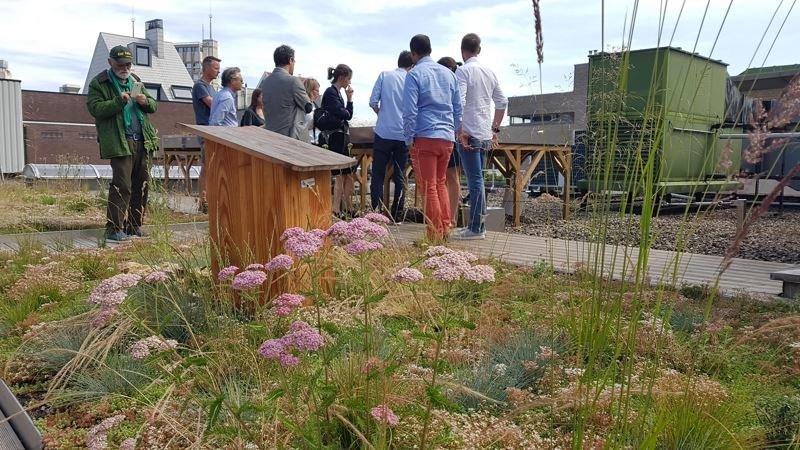oasis experimental platform in ANVERS