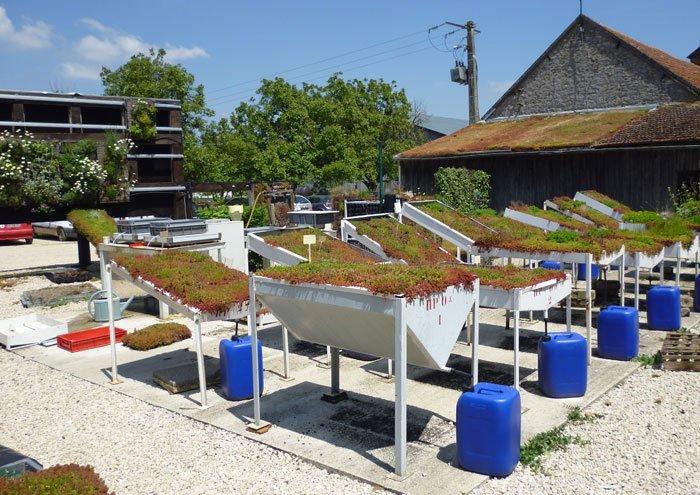 Vegetal i.D. R&D Platform (France)