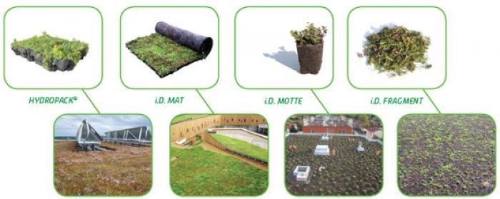 Les solutions multicouches Vegetal i.D.® et leur aspect esthétique à l'installation