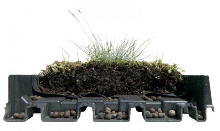 pre-cultivated green roof tray hydropack=