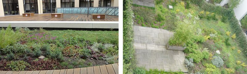 exemple-realisation-couvert-creapaysage-patio