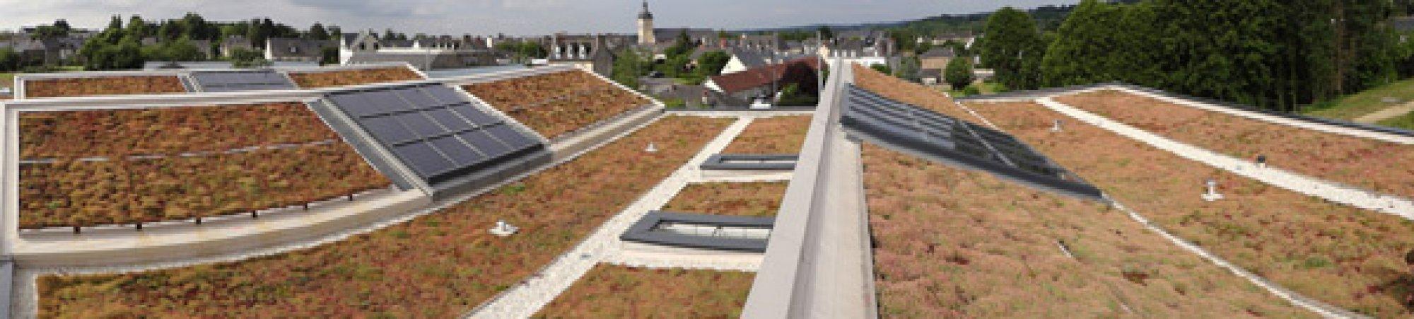 Réalisation de toiture végétale en tapis de sedum Caulnes