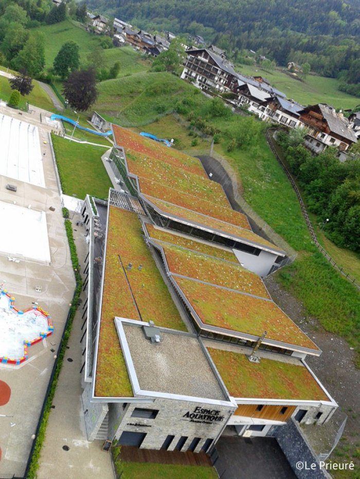 Steeply sloping green roof with HYDROPACK®, Morzine (74)