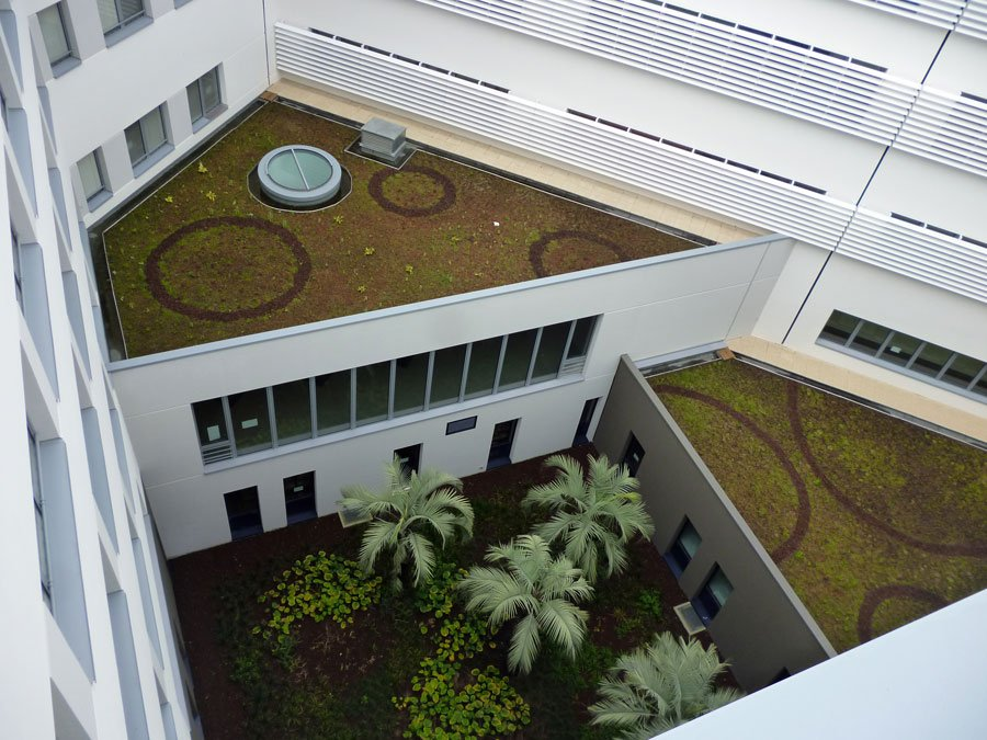 Roof vegetated on installation with i.D. FRAGMENTS, Lorient (56)