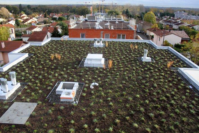 Aspect esthétique à la pose d'une toiture végétalisée avec la  technique de plantation iD MOTTE