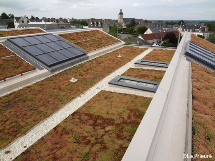 What is an extensive Green roof?