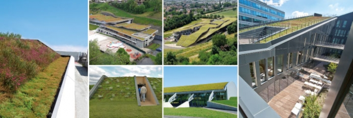 Green roof for pitched and steep roofs