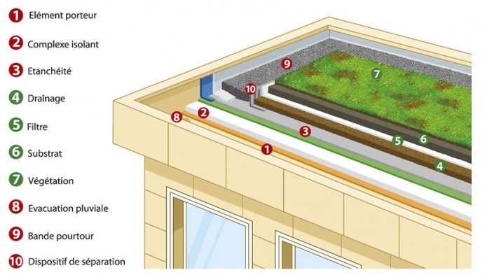 How to choose a green roof system?