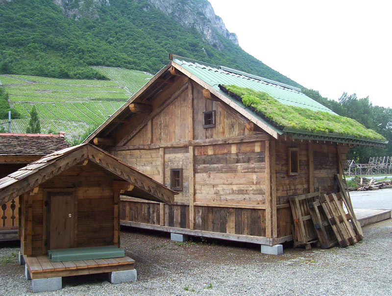 Steep Pitch Green Roof On Cottage Vegetal I D
