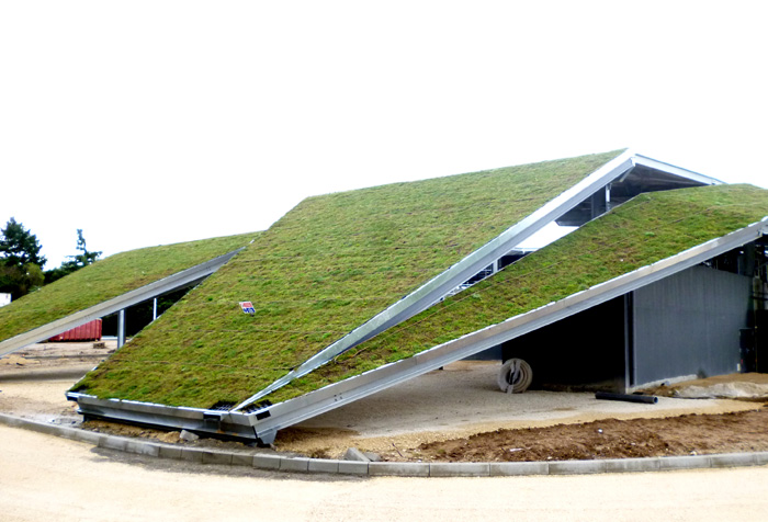 Green Roof On A Water Purification Station Vegetal I D