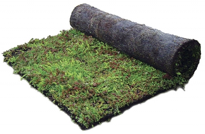 Description of the planting system with the i.D. MAT sedum mat
