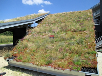 Steep pitched green roof with HYDROPACK®